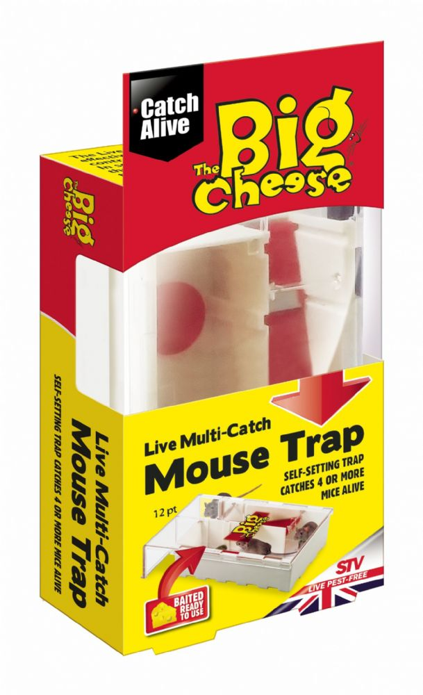 STV Multi Catch Mouse Trap